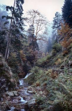 Allerheiligen (Forêt Noire)